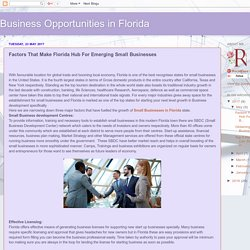 Business Opportunities in Florida: Factors That Make Florida Hub For Emerging Small Businesses