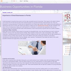 Business Opportunities in Florida: Importance of Small Businesses in Florida