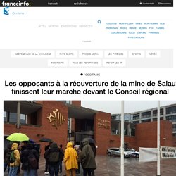 Les opposants à la réouverture de la mine de Salau finissent leur marche devant le Conseil régional - France 3 Occitanie