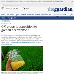 GM crops: is opposition to golden rice wicked?