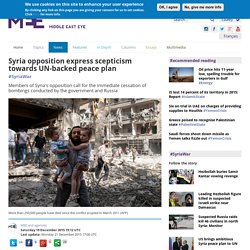 Syria opposition express scepticism towards UN-backed peace plan