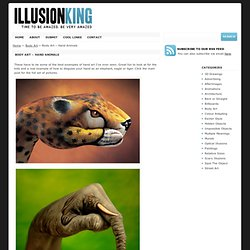 Optical Illusions & Blog Archive & Body Art - Hand Animals - StumbleUpon