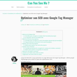 Optimiser son SEO avec Google Tag Manager – Can You Seo Me ?