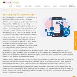 #1 Search Engine Optimization Company