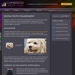 Optimizing Digital Photo Enlargment