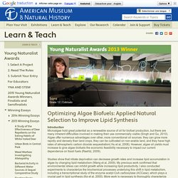 Optimizing Algae Biofuels: Applied Natural Selection to Improve Lipid Synthesis