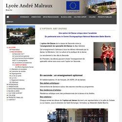 L'option art danse - Lycée André Malraux de Biarritz