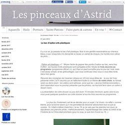 Le bac d'option arts plastiques - Les pinceaux d'Astrid