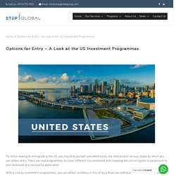 Options for Entry - A Look at the US Investment Programmes
