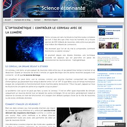 L'optogénétique : contrôler le cerveau avec de la lumière