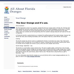 Sour Orange - All About Florida Oranges