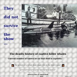 Orcas deceased in captivity