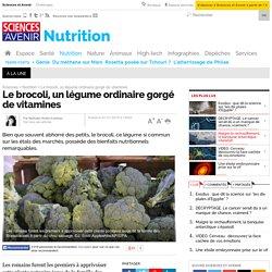 Le brocoli, un légume ordinaire gorgé de vitamines