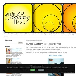 An Ordinary Life : Human Anatomy Projects for Kids