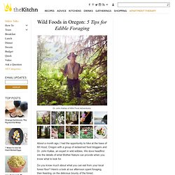 Wild Foods in Oregon: 5 Tips for Edible Foraging