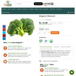 Organic Broccoli - Buy 100% Fresh & Organic Exotic Vegetables