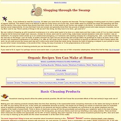 Organic Cleaning Recipes