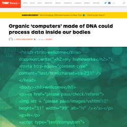 Organic 'computers' made of DNA could process data inside our bodies