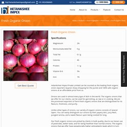 Fresh Organic Onion Exporters Gujarat,Fresh Organic Onion Export Company India