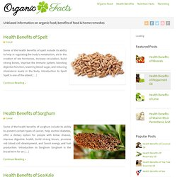 Natural & Organic Health: Food Benefits, Directory, Nutritional Value