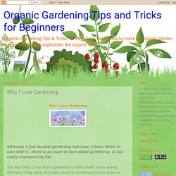 Organic Gardening Tips and Tricks for Beginners: Why I Love Gardening