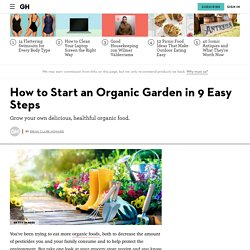 Organic Gardening – How to Start an Organic Garden