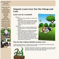 Organic Lawn Care For the Cheap and Lazy