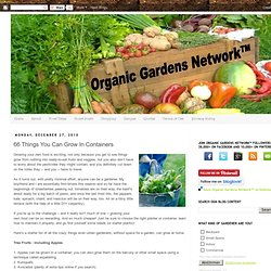 Organic Gardens Network™: 66 Things You Can Grow In Containers