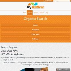 Organic Search Engine Optimization SEO Company - My Biz Niche