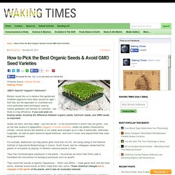 How to Pick the Best Organic Seeds & Avoid GMO Seed Varieties