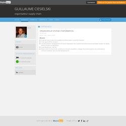 ORGANISATEUR SYSTEME D'INFORMATION DECATHLON - CV - Guillaume CIESIELSKI