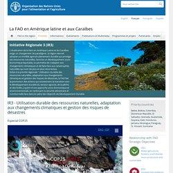 FAO - DEC 2019 - La FAO en Amérique latine et aux Caraïbes - Initiative Régionale 3 (IR3) - IR3 - Utilisation durable des ressources naturelles, adaptation aux changements climatiques et gestion des risques de désastres