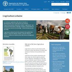 FAO - L'agriculture urbaine.