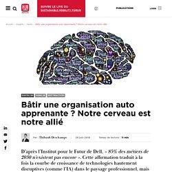 Bâtir une organisation auto apprenante ? Notre cerveau est notre allié