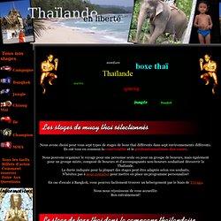Organisation de stages d'entrainement au Muay Thai en Thaïlande