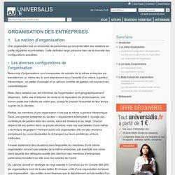 ORGANISATION DES ENTREPRISES, La notion d'organisation