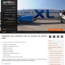 Organisation de voyages de groupes de grande taille en avion. Voyages pour groupes et évènements d'entreprise.