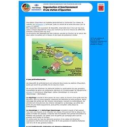 Organisation et fonctionnement d'une station d'épuration ADEME