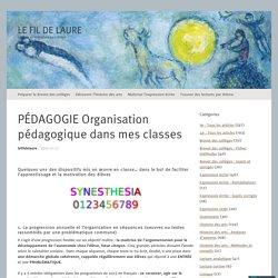 PÉDAGOGIE Organisation pédagogique dans mes classes