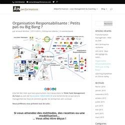 Management du futur : l'organisation responsabilisante... Alors, Petits pas ou big bang ?
