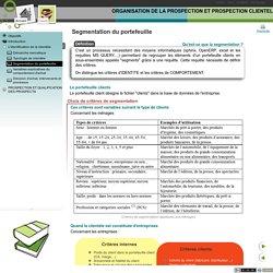 ORGANISATION DE LA PROSPECTION ET PROSPECTION CLIENTELE - Segmentation du portefeuille