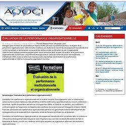 Évaluation de la performance organisationnelle - Association québécoise des organismes de coopération internationale (AQOCI)