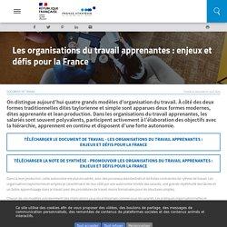 Les organisations du travail apprenantes : enjeux et défis pour la France