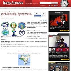 Cedeao, Cemac, SADC... Quels sont les points forts et les faiblesses des organisations africaines ?
