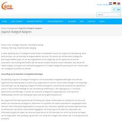 Organisch Strategisch Navigeren - Core Commit