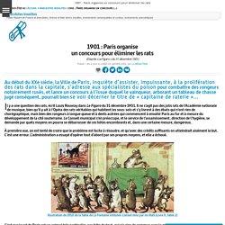 1901 : Paris organise un concours pour éliminer les rats