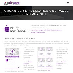 Délégation Académique pour le Numérique Éducatif (DANE)