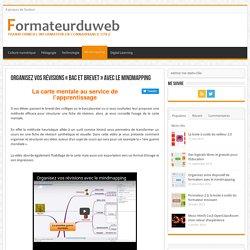 Organisez vos révisions «bac et brevet» avec le mindmapping