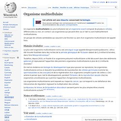 Organisme multicellulaire