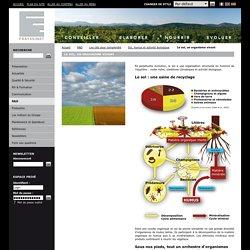 Le sol, un organisme vivant - Groupe Frayssinet